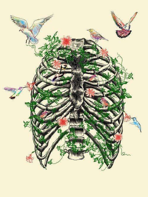 Best 25 human ribs ideas on pinterest for Huma bird tattoo