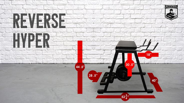 The Reverse Hyper is used to develop explosive speed and tremendous strength in the Posterior Chain. The posterior chain is a group of muscles consisting of Spinal erectors, Buttocks, Lower back, and Hamstrings.