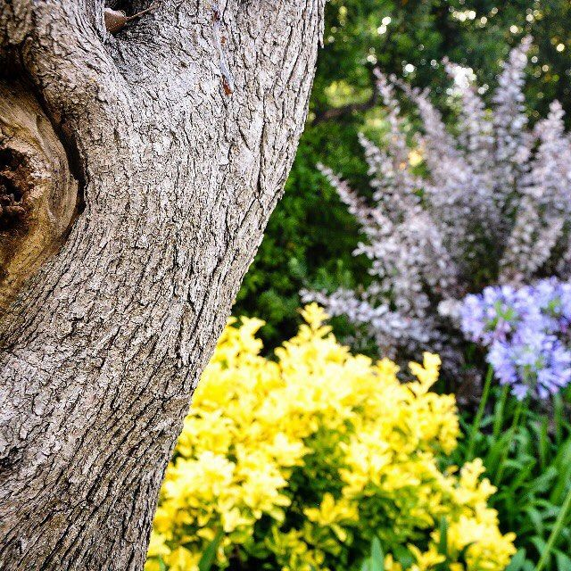 #PortHercule #FrenchRiviera how beautiful you are. Photography by #me. Французская Ривьера - какая ты красивая?! Фото @isa.luxaddicted #luxaddicted #instatravel #life #sea #summer #nature #isainfrenchriviera #каккрасиво плюс #красивожитьнезапретишь #beautiful #beautifuldestinations #instatravel #blog #travelblogger #fashionblogger #luxurytravel by isa.luxaddicted from #Montecarlo #Monaco