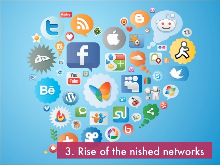 Rice of niche networks - Digital trends 2013