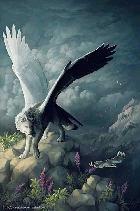Interesting fantasy art... a winged wolf.   Wolves ...