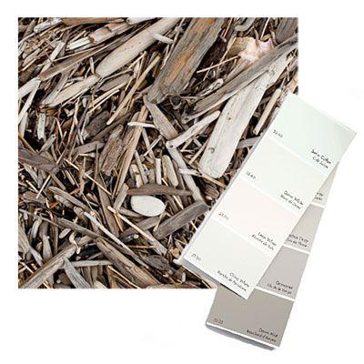 Fiore Interiors: Coastal Color Palate-Gray