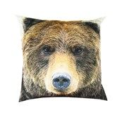 Brown Bear Velvet Look Cushion  Website Coming soon...