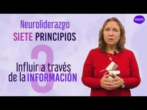 Seguir leyendo: Aproximación al Neuroliderazgo. Definición en http://liderazgopositivo.com/aproximacion-al-neuroliderazgo-definicion/