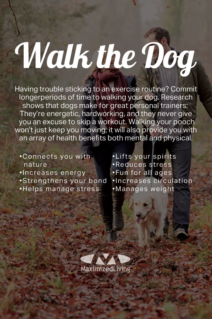 Have a dog? Know one you can borrow? Consider making the family pet your new personal fitness trainer! This week's #FitFamilies challenge is to walk the dog. A daily 30-minute walk with (wo)man's best friend can make you a happier, healthier person. Not to mention your dog will love you for it!
