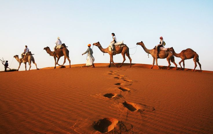 camels and tourists in Thar desert by Barabeke