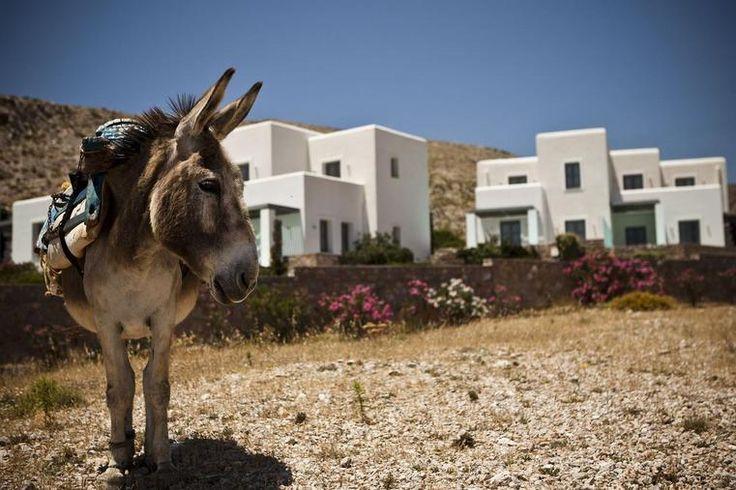 Anemi Hotel – Folegrandos. Greek Islands. Greece . Griechenland