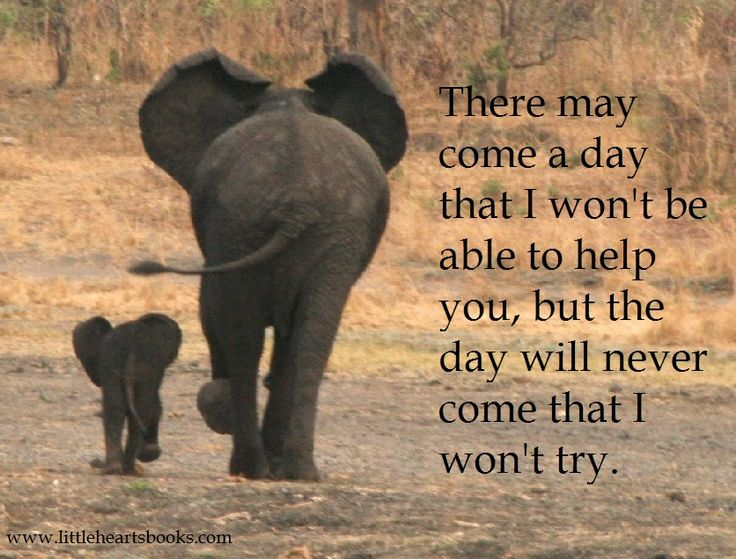 """There may come a day that I won't be able to help you, but the day will never come that I won't try."" L.R.Knost, author 'Two Thousand Kisses a Day: Gentle Parenting Through the Ages and Stages' www.littleheartsbooks.com"