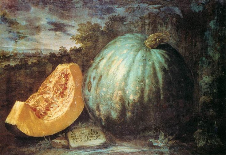 Bartolomeo Bimbi The Pumpkin - - Oil on canvas,  Museo Botanico, Florence