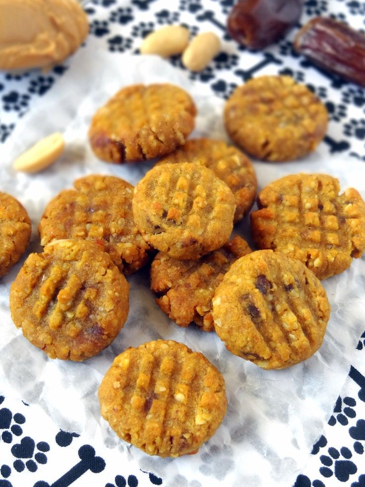 Peanut Butter Pumpkin Cookies for Dogs | Put On Your Cake Pants