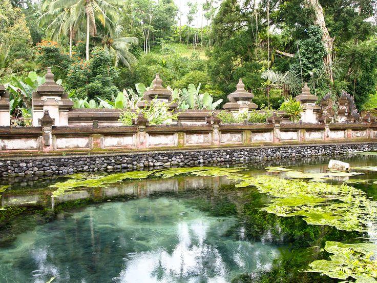 Bali Kassel