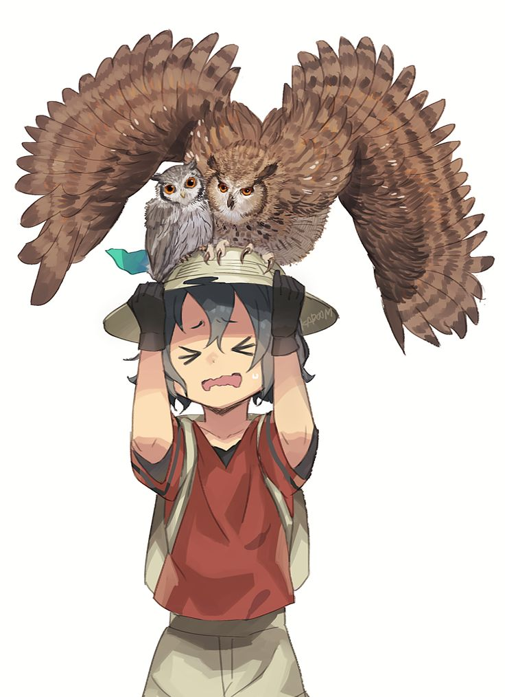 sieben002: eurasian eagle owl kaban and northern white-faced owl (kemono friends) drawn by kab00m chuck - Danbooru