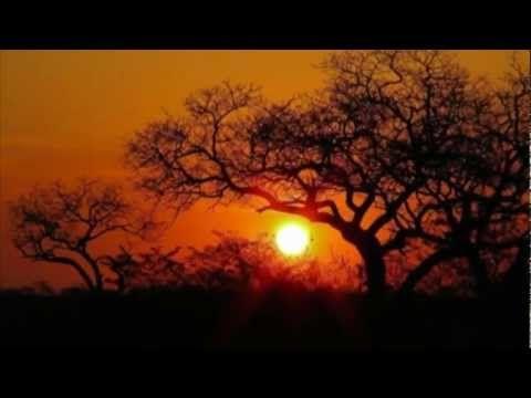 ISMAEL LO - AFRICA (senegal) J'adore !