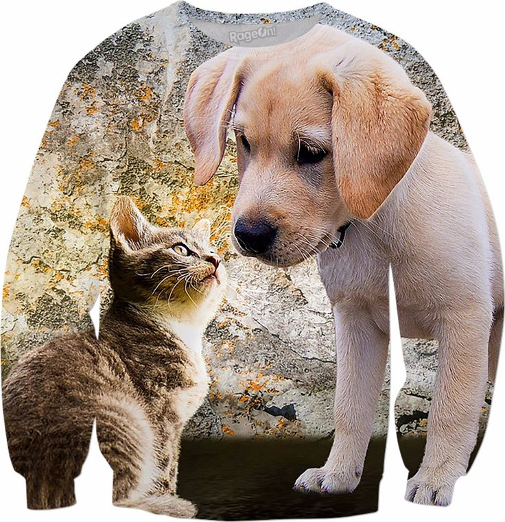 Check out my new product https://www.rageon.com/products/cat-and-dog-sweatshirt?aff=BWeX on RageOn!