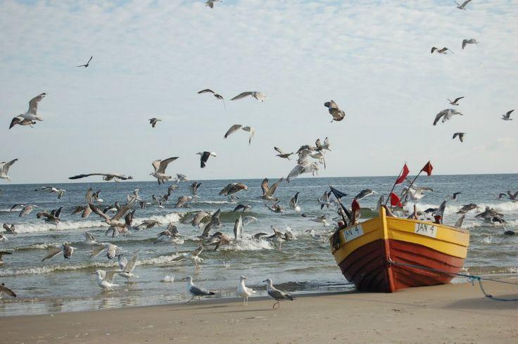 Baltic seaside - Jantar.