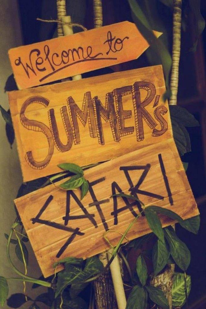 Planche à l'entrée de la maison avec Safari Party plantée dans pot fleur