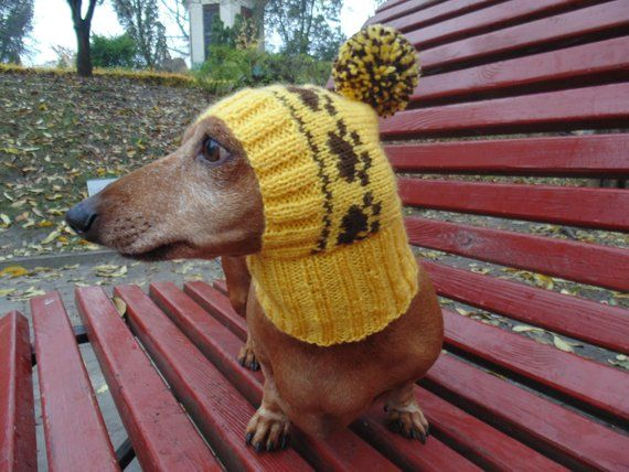 Small Dog Hat Pet Clothes Dog Hat Winter Hat Dachshund Etsy