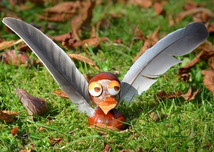 Vogel mit Kastanien basteln