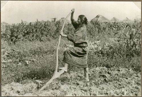 Ainu woman with a digging stick