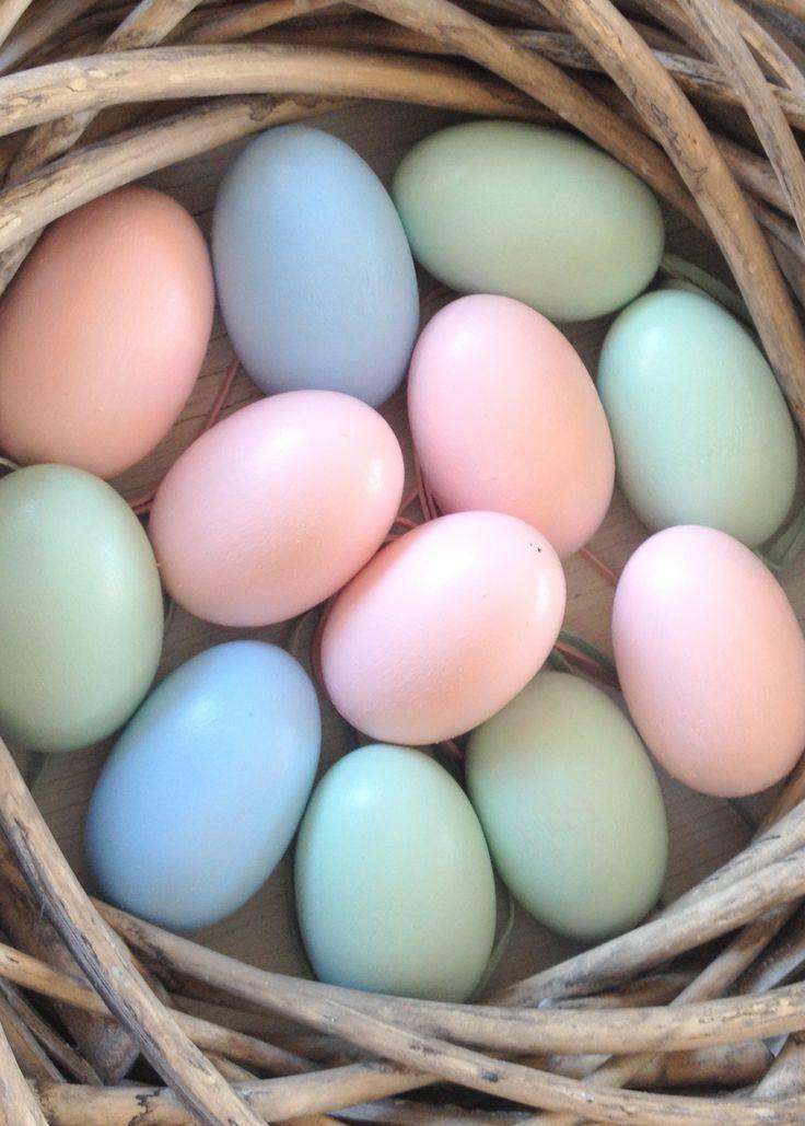 Easter - pastell eggs
