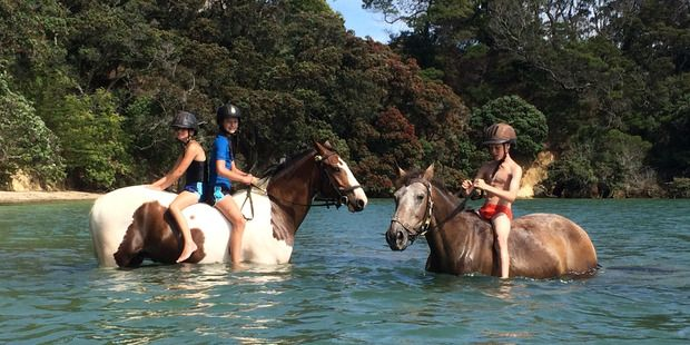 Waiheke: Just call us easy riders