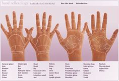 Interactive Hand Reflexology Chart- Just redone to make it easier for you to read.