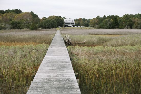 How dreamy to live in a house on stilts among the reeds and wildfowl, a weathered boardwalk for a garden path.