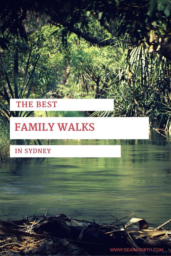 Find the best family-friendly walks in Sydney on this post.  Then click the links to read detailed descriptions of each walks, print and go!