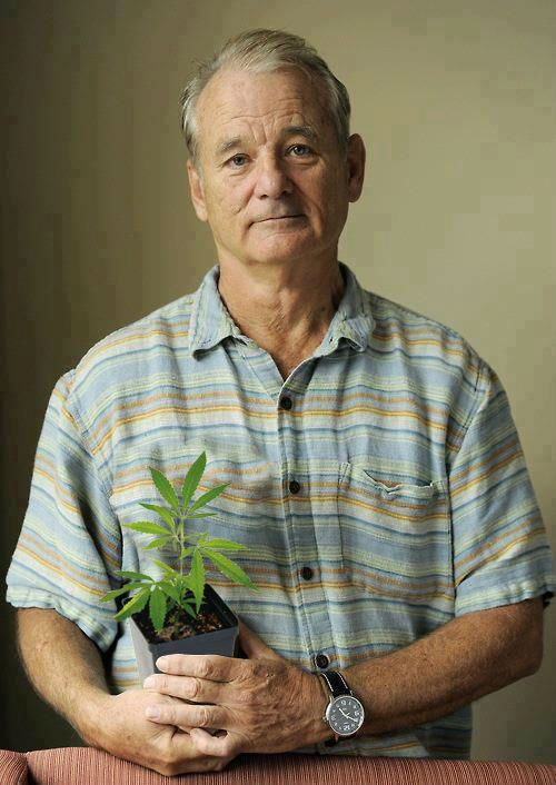 Curiosities: Bill Murray is the Most Interesting Man in the Universe