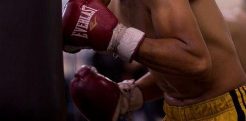 Organización Mundial de Boxeo se mudará de Puerto Rico a Florida...