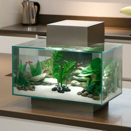 Aquarium fluval edge led fluval aquariums pet decor for Aquarium decoration set