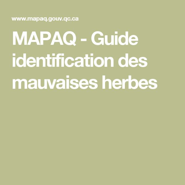 MAPAQ - Guide identification des mauvaises herbes