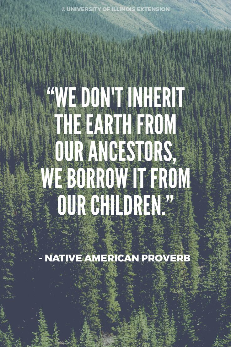 """We don't inherit the earth from our ancestors, we borrow it from our children."" - Native American Proverb #Earth Day #Quote #Nature                                                                                                                                                      More"