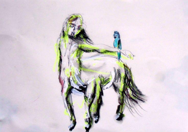 Centauro 20x30cm Ilaria Berenice 2015