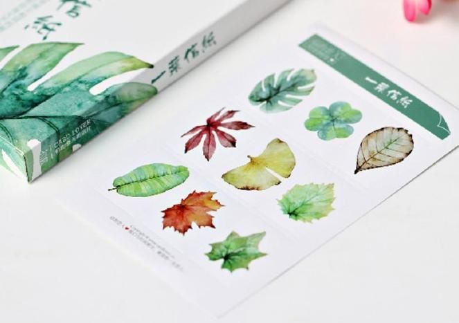 Natural Watercolor Leaves Postcard Set 30 Units The White Pad