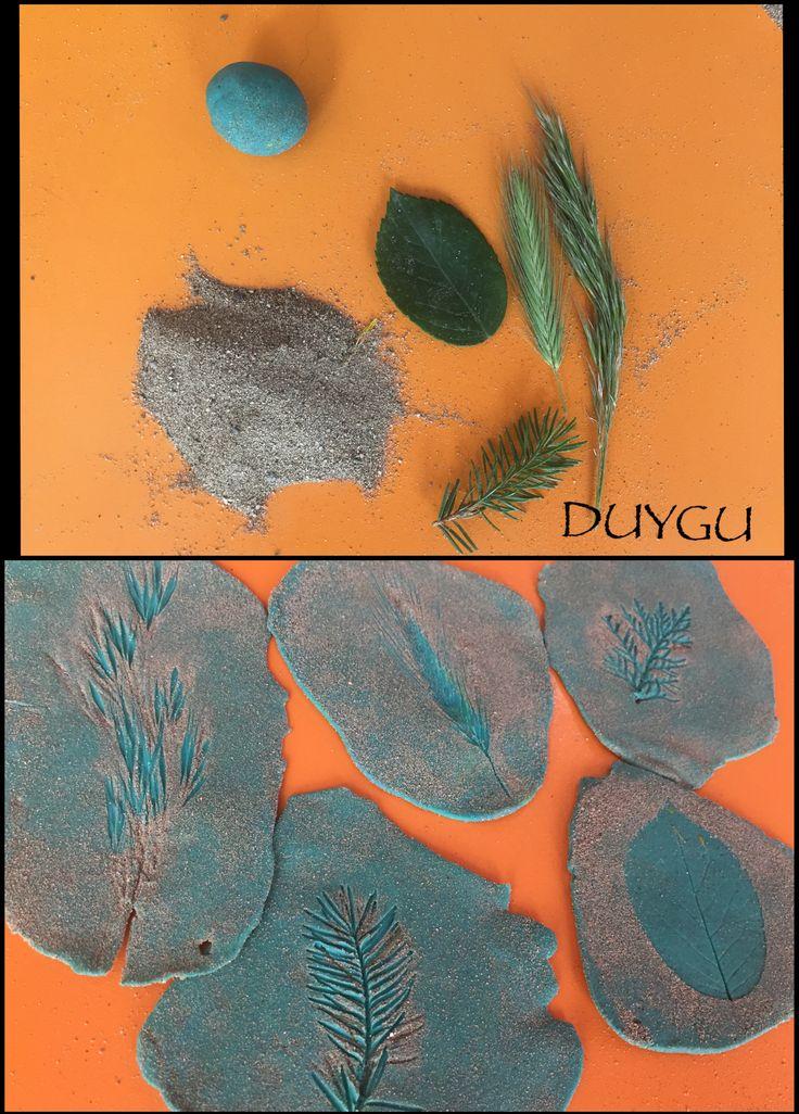 Bitki Fosili( Oyun hamuru- kum)