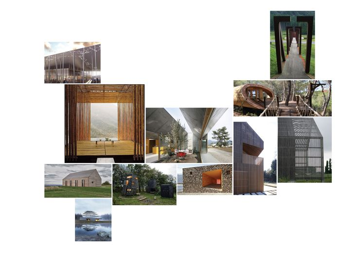 Natasha Reid Design - Inspiration | Woodland Trust Visitor Centre | Arts | Culture | Identity | Timber | Nature Collage | Mood Board