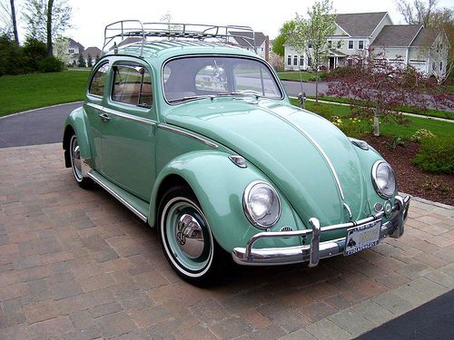 """Slug bug green!"" (1963 VW Beetle by 63vwdriver, via Flickr) [I found the picture here -> http://www.flickriver.com/photos/63vwdriver/3046460713/]"