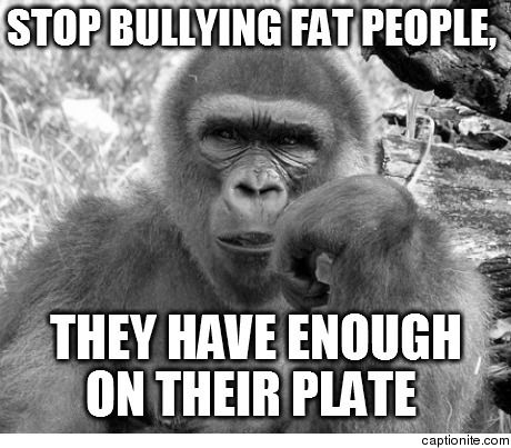 Funny Memes About Fat People 20 best memes that mak...