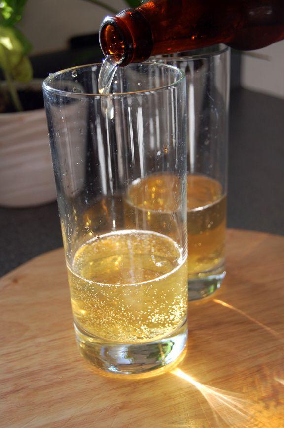 MAKE HARD CIDER  using your brew equipment (USE SPLENDA TO SWEETEN IF TOO BITTER, YEAST WONT EAT IT)