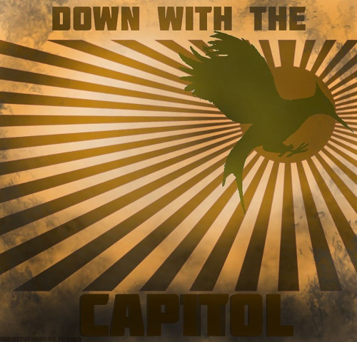 down with the capitol #hungergames