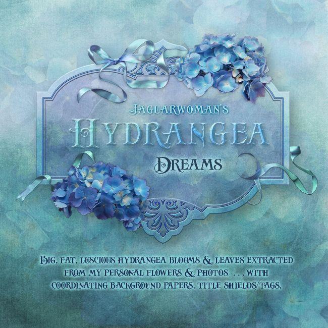 """Jaguarwoman's """"Hydrangea Dreams"""""""