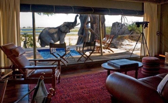Das Zarafa Camp gehört laut dem National Geographic Adventure Magazin zu den Top Öko-Lodges der Welt. Zudem wurde es in die Liste der schönsten Lodges der Welt aufgenommen. Die Aussicht ist, wie man sieht, grandios.