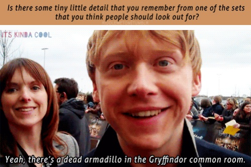 Now I REALLY want to go see the studio tour in London. o-o