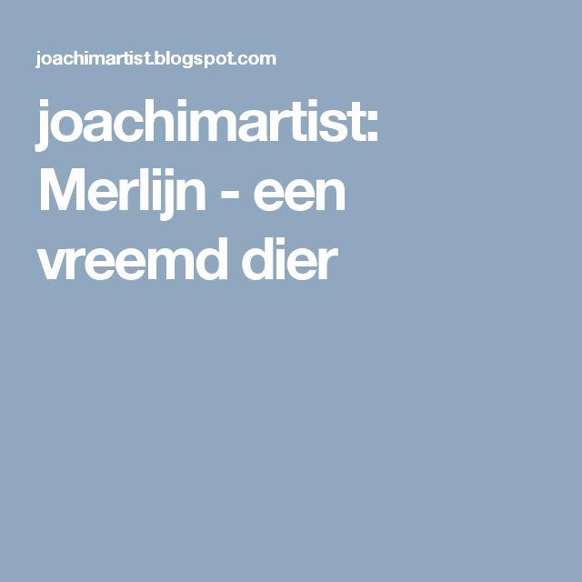joachimartist: Merlijn - een vreemd dier