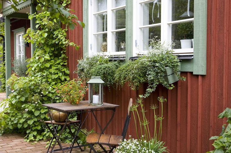 min lilla veranda: Guldkorn i livet