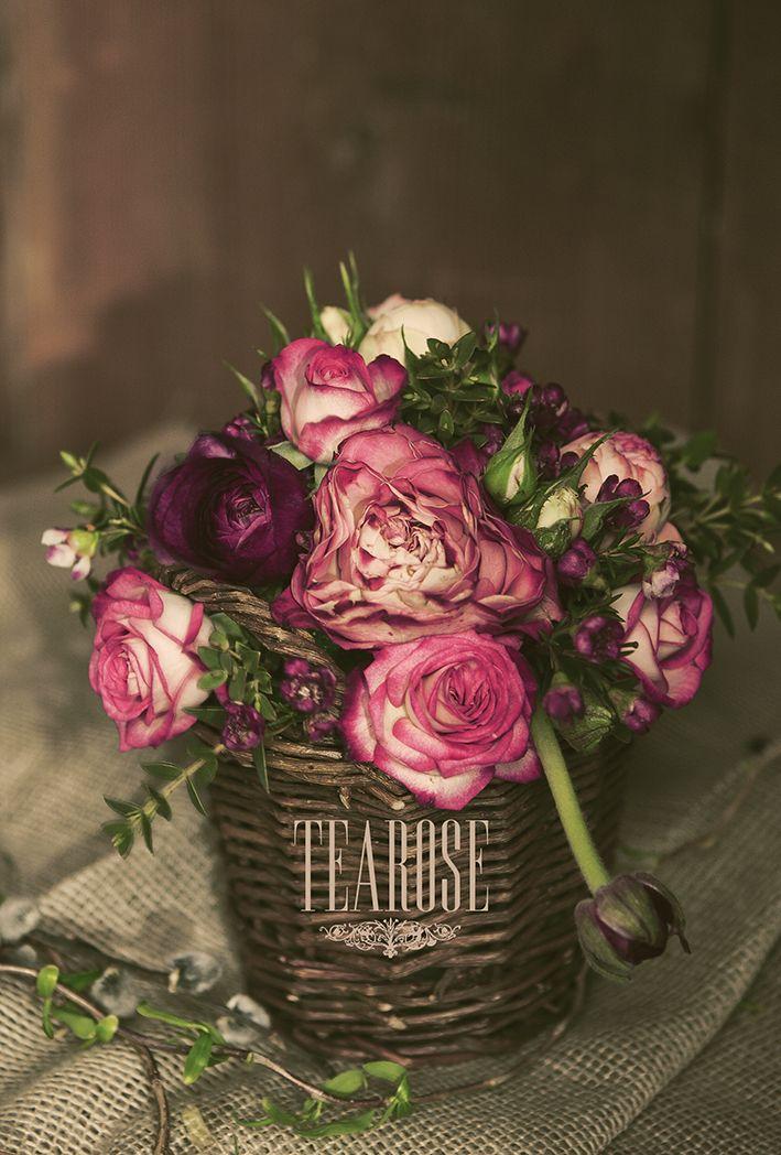 Rózsák lila hangulatban
