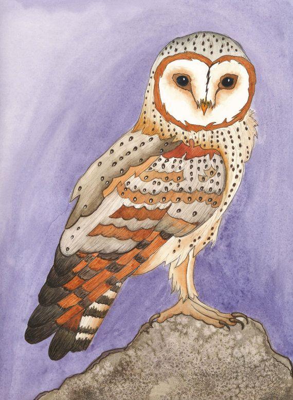 Barn Owl (Tyto Alba) Original Watercolor Painting