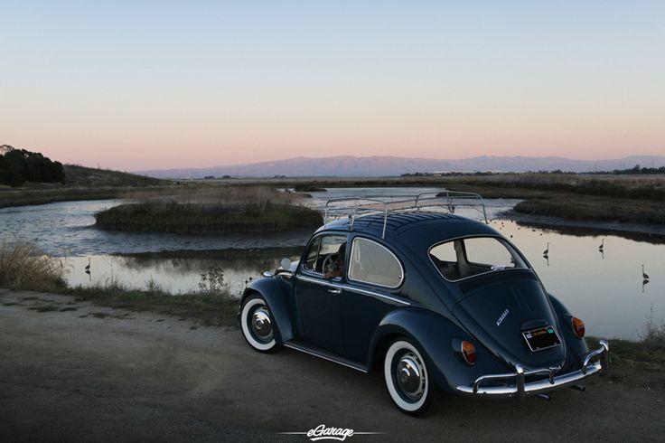 54 best images about vw bug love on pinterest purple cars and volkswagen. Black Bedroom Furniture Sets. Home Design Ideas