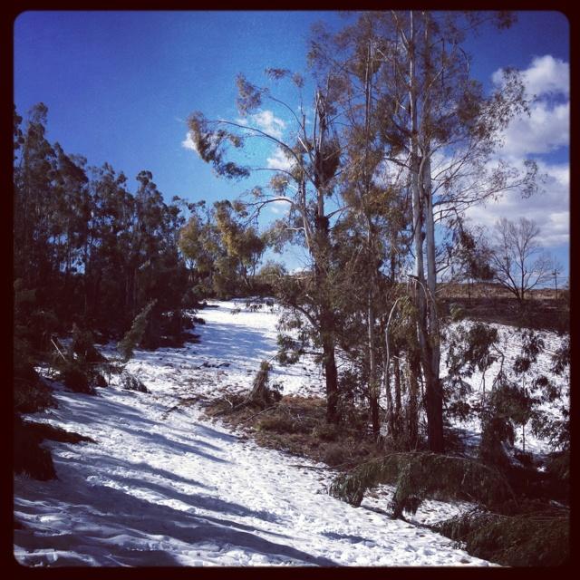 Winter Wonderland - Kwa-Zulu Natal Midlands. Visit the area: www.midlandsmeander.co.za #placestogo